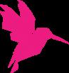 Pink TransMed Bird